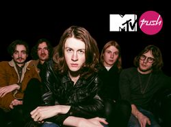 MTV Push | Blossoms