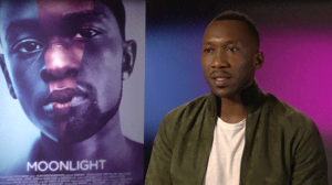 movie spotlight - moonlight
