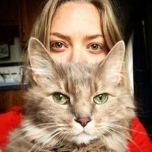 Journée internationale du chat : Ces stars accros à leur félin !