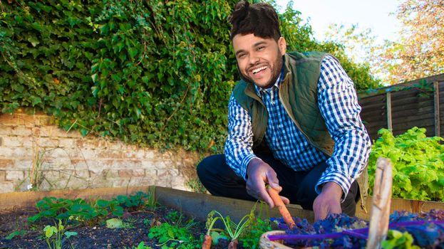 Non c'è niente che dia più soddisfazione di coltivare il proprio orto. Forza, mettiti all'opera!