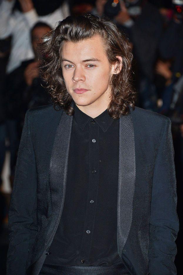Non gli fossero capitati gli One Direction, Harry Styles starebbe studiando per diventare fisioterapista. Ce lo vedi?