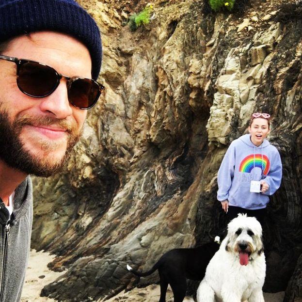Liam Hemsworth e Miley Cyrus adorano i loro cani!
