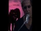 Mai Nella Vita: Adriano Celentano Video - MTV
