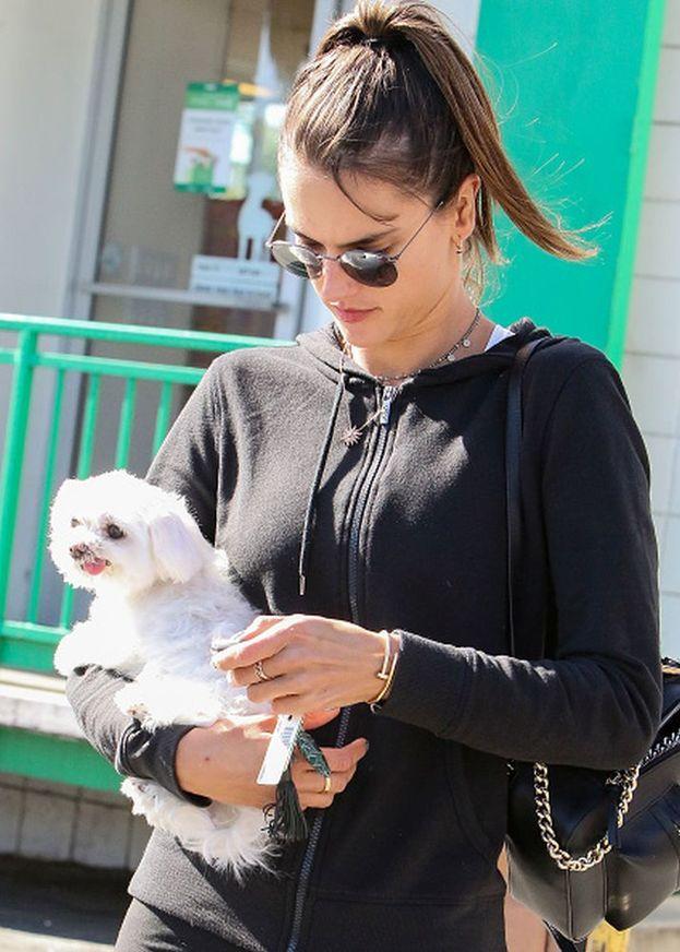 La top model Alessandra Ambrosio con il suo cagnolino bianco