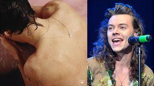 Harry, isto é o teu álbum a solo!?