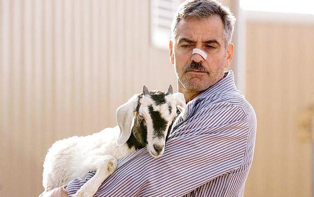 George Clooney en 'Los hombres que miraban fijamente a las cabras' (2009)