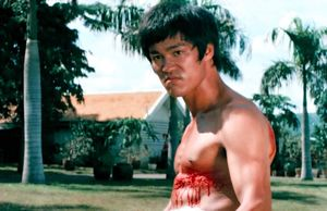¿Cuánto sabes de Bruce Lee?