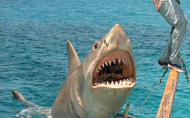 'Tiburón, la venganza' (1987)