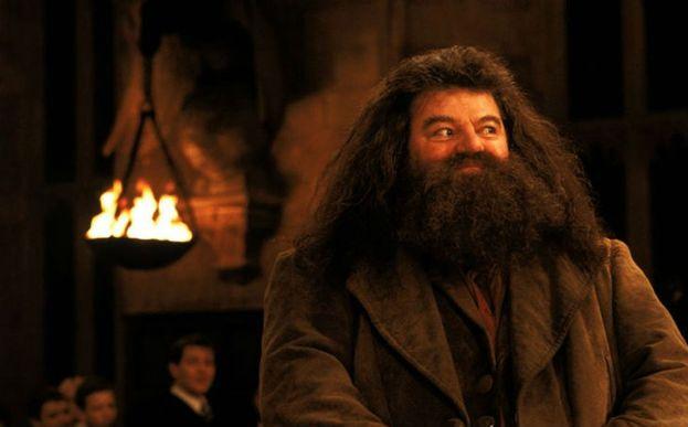 3. Rubeus Hagrid de 'Harry Potter'