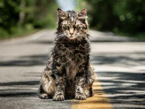 Pet Sematary: l'horror più spaventoso dell'anno arriva nei cinema