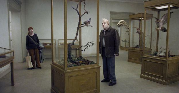 """""""Un piccione seduto su un ramo riflette sull'esistenza"""" (2014)"""