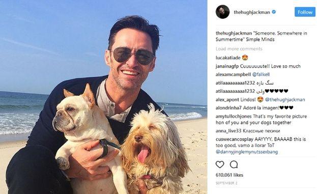 Hugh Jackman con i cani Dali e Allegra