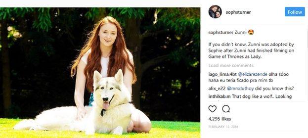 """Sophie Turner e il suo cane """"metalupo"""" Zunni"""