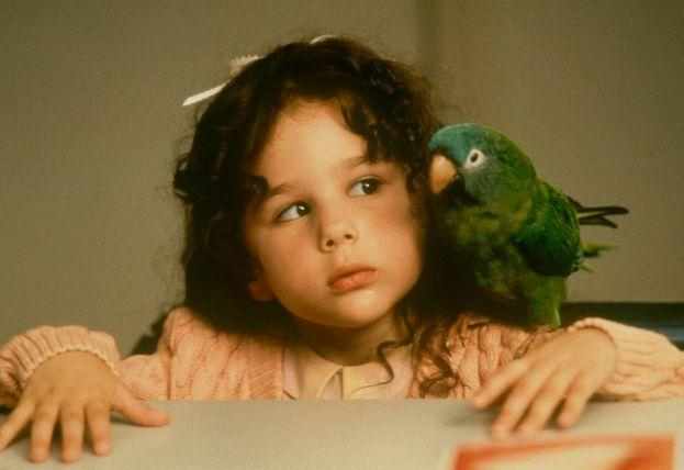 """""""Paulie - Il pappagallo che parlava troppo"""" (1998)"""