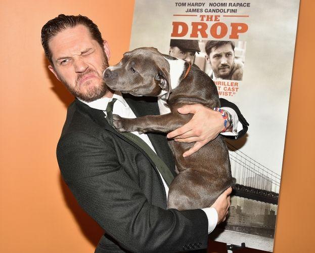 Tom Hardy con il cane Zora alla premiere di Chi è senza colpa (The Drop)