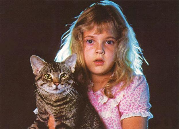 """""""L'occhio del gatto"""" (1985)"""