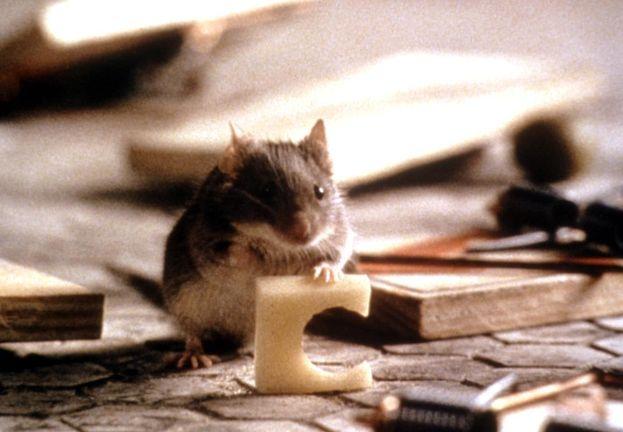 """""""Un topolino sotto sfratto"""" (1997)"""