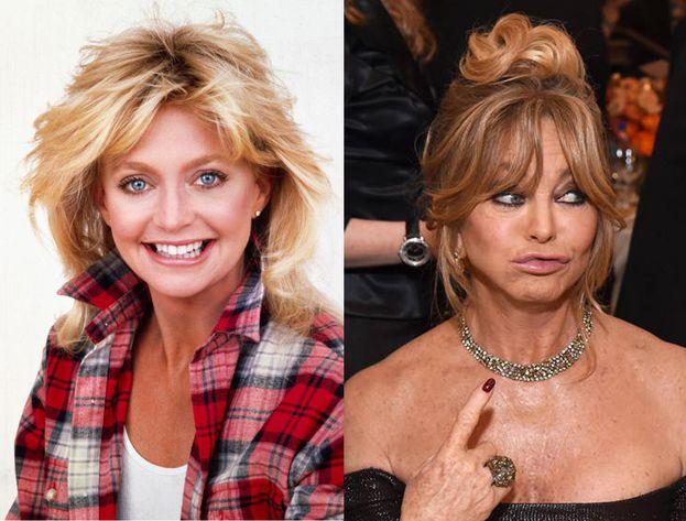 Goldie Hawn, 1987 - 2017