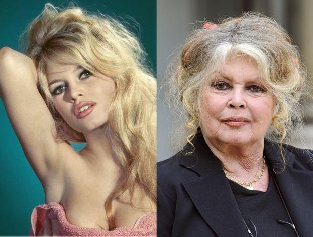 Brigitte Bardot, 1963 - 2007