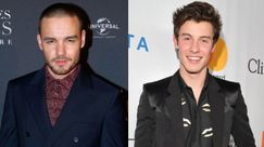 Liam Payne scherza con Shawn Mendes su Twitter e i fan impazziscono all'idea collaborazione