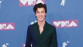 Shawn Mendes: irresistibile sul red carpet degli MTV VMA 2018