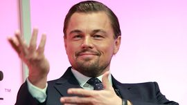 Leonardo DiCaprio: la sua petizione per liberare 100 balene in cattività ha funzionato