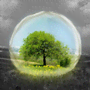 Earth Day 2021: come celebrare questa giornata al motto di
